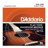 D'ADDARIO EFT13 | ARTIST-PRO