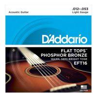 D'ADDARIO EFT16 | ARTIST-PRO