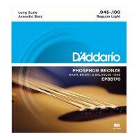D'ADDARIO EPBB170 | ARTIST-PRO